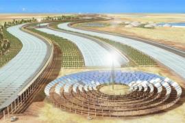 Qatar lên kế hoạch biến sa mạc Sahara thành vườn rau sạch khổng lồ